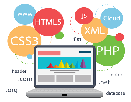 Dynamic Web Design Services